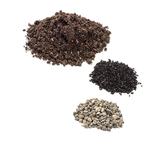 H Potter Terrarium Kit Small Includes Planting Instructions Import