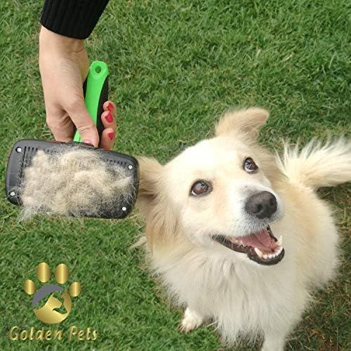 Brosse pour chiens et chats Golden Pets - Autonettoyante - Convient pour poils courts à longs - Pour petits et grands animaux- Nettoyage rapide + manuel d'entretien (français non garanti).