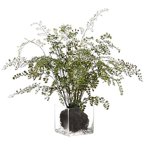 28'' Maidenhair Fern Silk Plant w/Glass Vase -Green