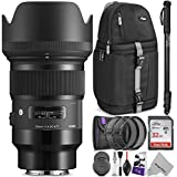 Sigma 50mm f/1.4 DG HSM Art Lens for SONY E Mount Cameras w/Advanced Photo and Travel Bundle