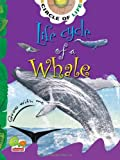 Life Cycle of a Whale: Key stage 1 (Circle of Life)