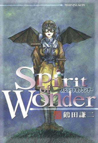 Spirit of Wonderの感想