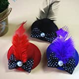 Ioffersuper Cute Caps princess style Design Dog Hair Pet Grooming Hair Clips Hat Clip