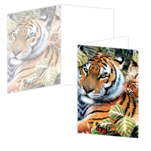 ECOeverywhere Cub Hugs Boxed Card Set, 12 Cards and Envelopes, 4 x 6-Inches, Multicolored (bc11562)