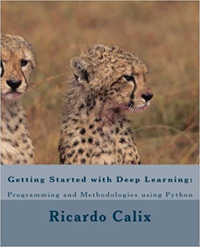 Getting Started with Deep Learning: Programming and Methodologies using Python