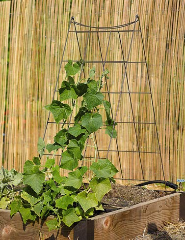 Gardener's Supply Company Wire A-Frame Trellis ()