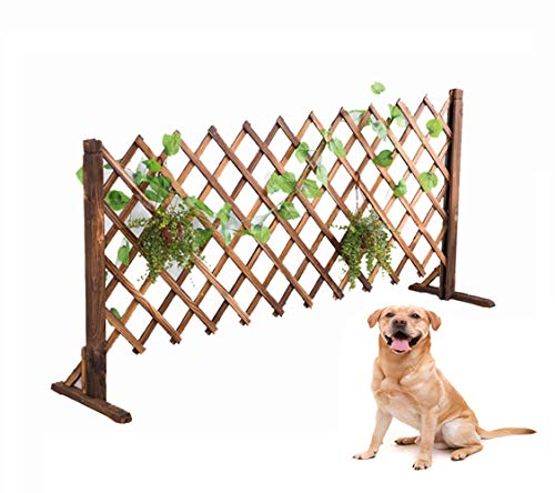 uyoyous Expanding Wood Fence 63inch Decorative Fence for Home Garden Pet Dog Barrier Safety Gate (2 Pack) (Best Wood For Outdoor Fence)