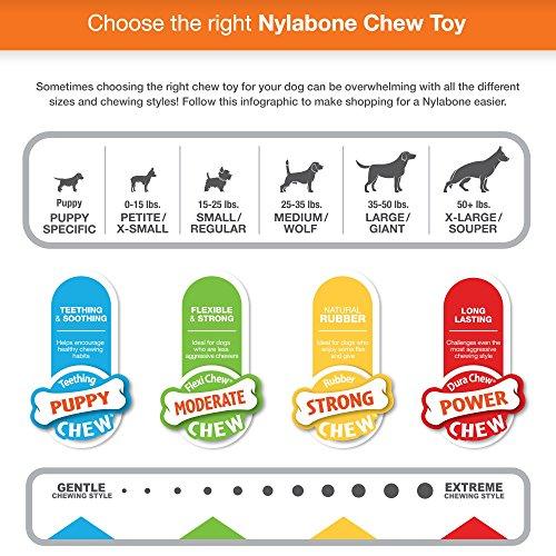 Игрушки для грызения Nylabone Puppy Starter