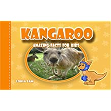 Kangaroo: Amazing Facts For Kids