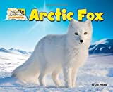 img - for Arctic Fox (Arctic Animals: Life Outside the Igloo) book / textbook / text book