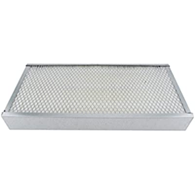 Luber-finer LAF2527 Heavy Duty Air Filter: Automotive