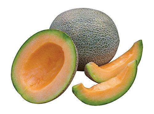 Burpee Ambrosia Cantaloupe Melon Seeds 30 seeds