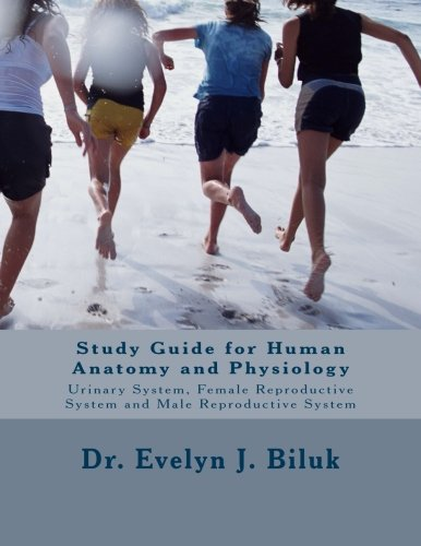 Anatomy And Physiology Of The Male Reproductive System Manual Guide