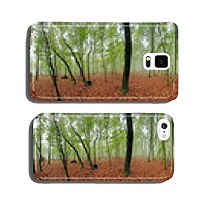Spring forest 360 panorama at mist cell phone cover case Samsung S5