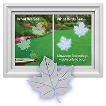 Window Alert Maple Leaf Decals