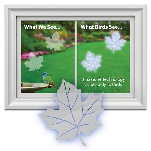 window bird decals - 4