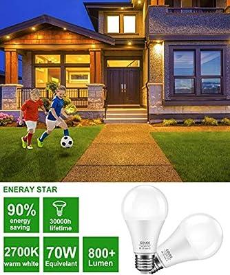 Govee led Bulbs