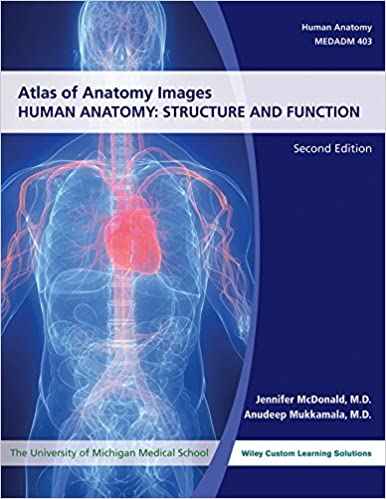 Atlas Of Anatomy Images Structure And Function University Of