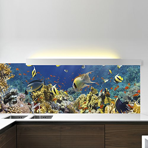 azutura Under The Sea Wall Mural Tropical Fish Photo Wallpaper Bathroom Kids Home Decor available in 8 Sizes Gigantic Digital