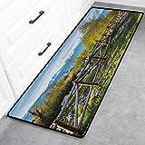 "Farmland Outdoor Doormats, Artsy Idyllic Scene with Tree Trunk Plank and Snow Mountain Range The Alps Photo Area Rug - Green Blue, 24"" x"