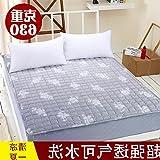 B&H Portable fold Mattress,Floor sleeping pad office nap moisture proof mat-N 90x190cm(35x75inch)