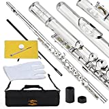 ENGRAVED SILVER Plated CLOSED HOLE High Grade Flute, Glory Closed Hole C Flute With Case, Tuning Rod and Cloth,Joint Grease and Gloves-Click to see more colors