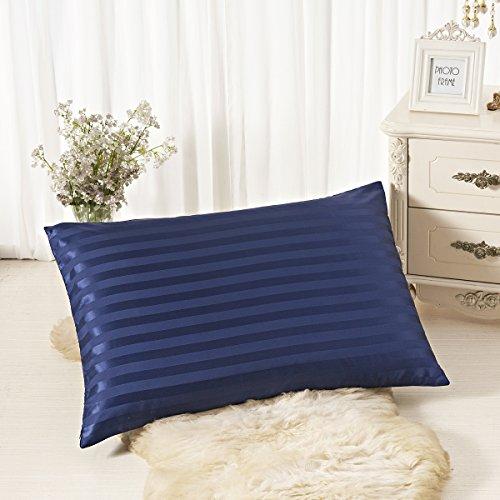 ALASKA BEAR - Natural Silk Pillowcase, Hypoallergenic, 19 momme, 600 thread count 100 percent Mulberry Silk, King Size with hidden zipper (1, Navyblue Stripe) (Stripe Luxury Silk)