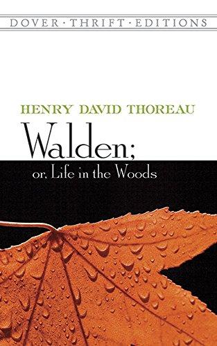 walden woods - 9