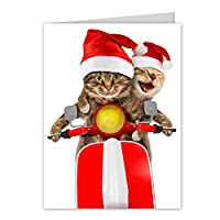 Scooter Cats Holiday Card Pack - Set of 25 cards - 1 design, versed inside with envelopes