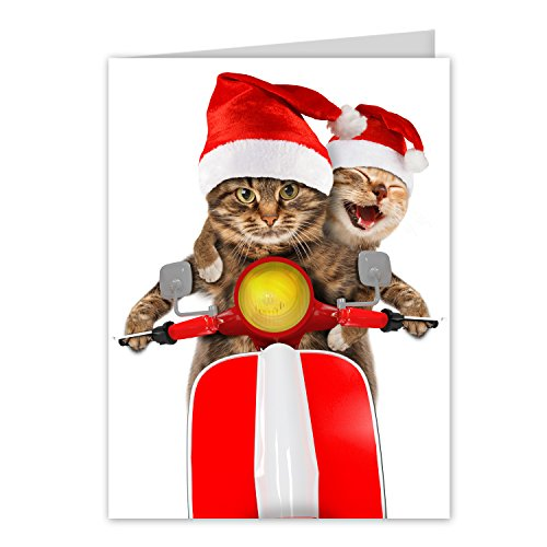 Scooter Cats Holiday Card Pack - Set of 25 cards - 1 design, versed inside with envelopes Photo #1