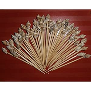 51ro88Czy6L._SS300_ Top Rated Sets of Seashell Toothpicks