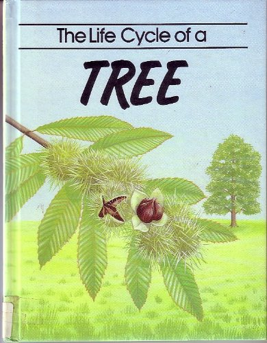The Life Cycle of a Tree: John Williams ; Illustrated by Jackie Harland (Life Cycles)