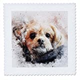 3dRose Sven Herkenrath Animal - Funny Dog Portrait - 25x25 inch quilt square (qs_280297_10)