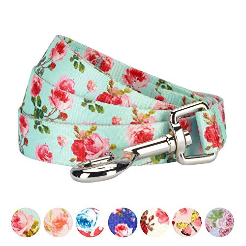 Print Charming Dog (Blueberry Pet Durable Spring Scent Inspired Floral Rose Print Turquoise Dog Leash 4 ft x 1
