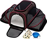 Cheap Expandable Pet Cat Carrier for Small Dogs and Cats – Soft Sided Crate – Airline Approved Medium Kennel Travel Bag – Fits Under or on Top of Seat – 2.8 lbs Dog Carriers with Bonus Blanket & Bowl