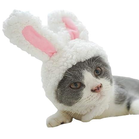 FLAdorepet Orejas de Conejo para Gato pequeño Perro Fiesta Disfraz de Traje Perro Sombrero Diadema Cuello