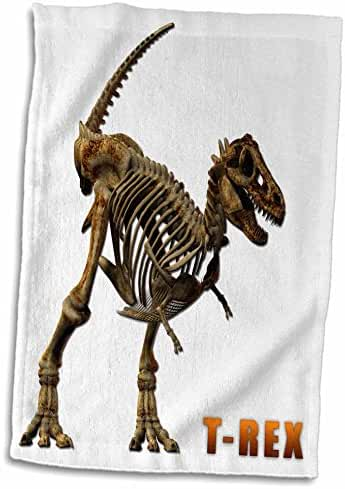 3dRose Boehm Graphics Dinosaur - T Rex Dinosaur - 12x18 Hand Towel (twl_31872_1)
