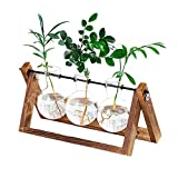 Plant Terrarium Wooden Stand, Desktop Glass Planter Bulb Vase with Retro Solid Wooden Stand and Metal Swivel Holder for Hydroponics Plants Home Garden Office Wedding Decor (3 Bottle)