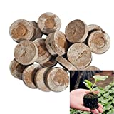 Jiffy Pellets Seed Compost Plug for Indoors or Greenhouse Transplant Right to Garden(50ct - 25mm)