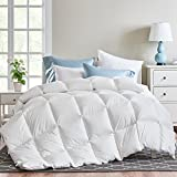 WR Down Comforter,Queen Comforter All Season Duvet Insert,Goose Review and Comparison