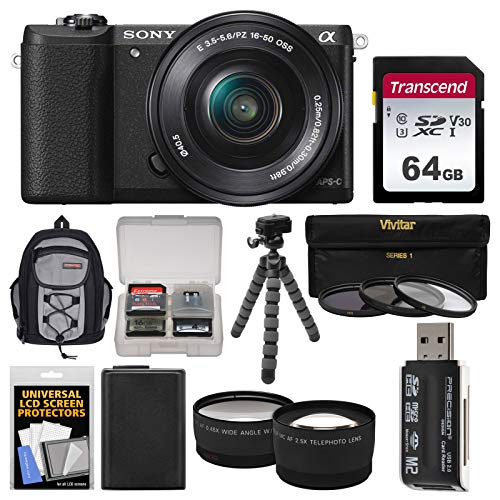 Sony Alpha A5100 Wi-Fi Digital Camera & 16-50mm Lens (Black) with 64GB Card + Backpack + Battery + Tripod + Filters + Tele/Wide Lens Kit (Sony A5100 16 50mm Mirrorless Digital Camera)