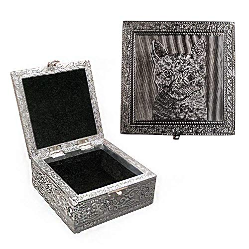 Vintage Jewelry Box Case | 9 Styles | Bronze or Silver Metallic Metal Plating with Floral Accent Designs | Perfect for Earrings Necklaces and Rings (Silver Cat)
