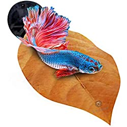 SunGrow Betta Bed Kit, 4 to 6-inches, Comfy Hammock, Rest Area for Fish, Improves Health by Simulating Betta's Native Habitat, 6 Beds + 2 Suction Cups Included