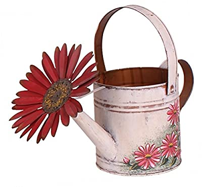 Antique Finish Spring Decorative Watering Can (white)
