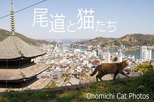 尾道と猫たち: OnomichiCatPhotos