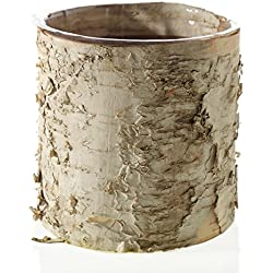 "Accent Birch Cylinder Vase Rustic Wedding Decorations - 5.5"" Tall x 6"" Wide"