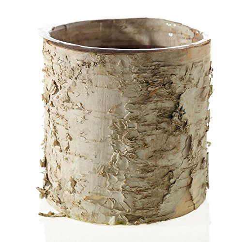 Accent Birch Cylinder Vase Rustic Wedding Decorations - 5.5'' Tall x 6'' Wide