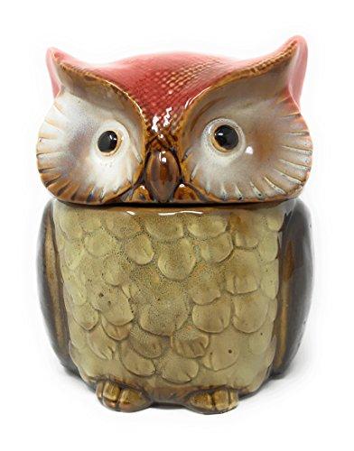 (Nature's Home Ceramic Owl Decorative Canister Storage Jar (Red))