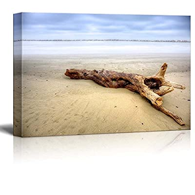 Canvas Prints Wall Art - Beautiful Scenery/Landscape Dead Wood on The Beach | Modern Wall Decor/Home Decoration Stretched Gallery Canvas Wrap Giclee Print & Ready to Hang - 24