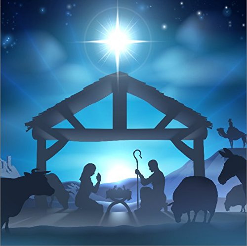 LFEEY 10x10ft Birth of Jesus Backdrop Christmas Night Manger Nativity Scene Silhouette Background Farm Barn Stable Christianity Photography Prop Studio Photo Booth Props (Nativity Backdrop)